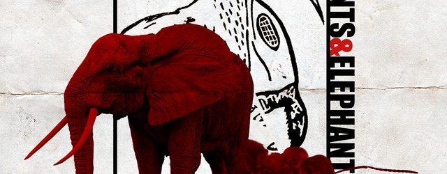 #FMTrends Boogie – Ants & Elephants | @boogiemania @dvaliaskhryst