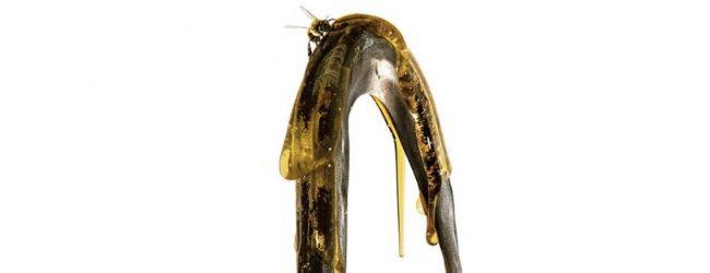 "#FM Trends: Jordan Peele's ""Candyman"" Trailer Drops"